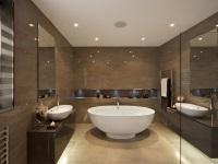 Особенности дизайна ванной комнаты без унитаза