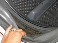 Как избавиться от плесени в стиральной машине?