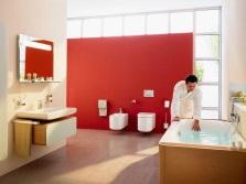 Зонирование  ванной и душа - контрастные зоны