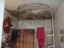 Плесень на потолке в ванной комнате