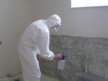 Устранение плесени в ванной