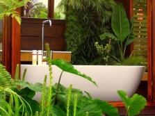 Крупные растения в ванной