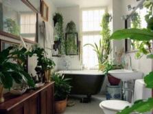 Вьющиеся цветы в ванной