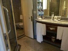 Раздельные санузел и ванная