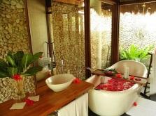 Цветы и аксессуары для ванной