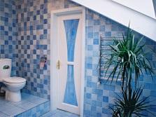 Дверь из пластика с декоративными вставками
