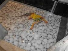 Наливные полы в маленькой ванной