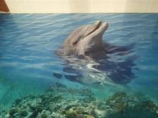 Дельфины - наливные полы