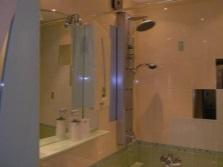 Душевая панель в ванне