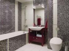 Совмещение ванны с туалетом и их дизайн