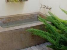 Папоротник для ванной комнаты без окна