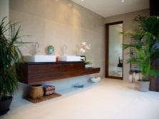 Большие растения для ванной без окон