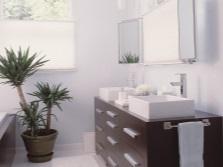 Юкка для ванной комнаты с окном