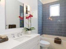 Орхидея для ванной комнаты с окном