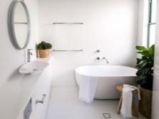 Драцена для ванной с окном