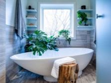 Горшечные цветы для ванной комнаты с окном