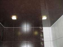 Выбор потолка для ванной - натяжной или из гипсокартона