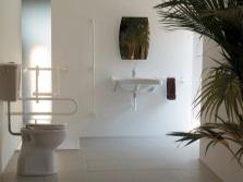 Количество поручней в ванной комнате