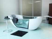 Ванна с прозрачным бортом