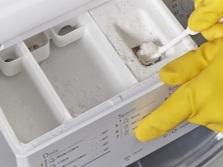 Своевременная чистка контейнера под моющие средства в стиральной машине как профилактика от плесени