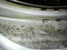 Плесень на резиновой манжете в стиральной машине