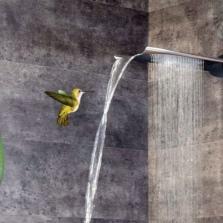 Настенные тропический душ