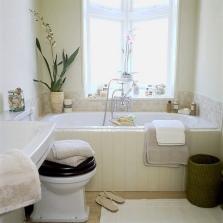 Ванная и туалет в одной комнате