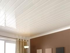 Панели для потолка в ванной. Эстетично, просто и экономно!