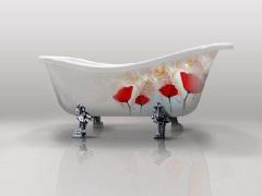 6 лучших производителей чугунных ванн