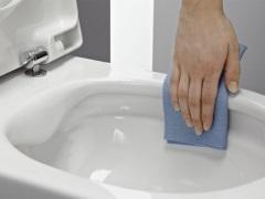 Уход за унитазом. Как правильно мыть и очищать унитаз в домашних условиях?