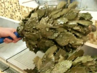 Запаривание дубового веника: лучшие способы. Добротный дубовый веник для бани: тонкости сбора и хранения. Как запарить и как париться