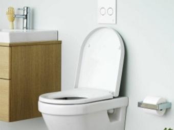 Унитаз Gustavsberg Hygienic безободковый