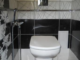 Советы по выбору смесителя с гигиеническим душем