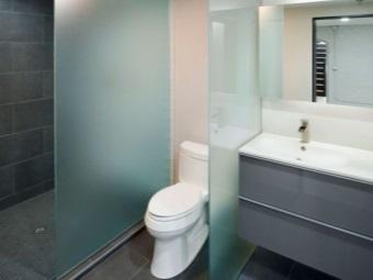 Разделение ванной комнаты стеклянными перегородками