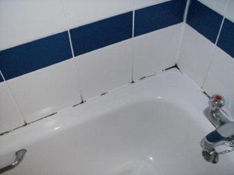 Способы избавления от плесени на герметике в ванной