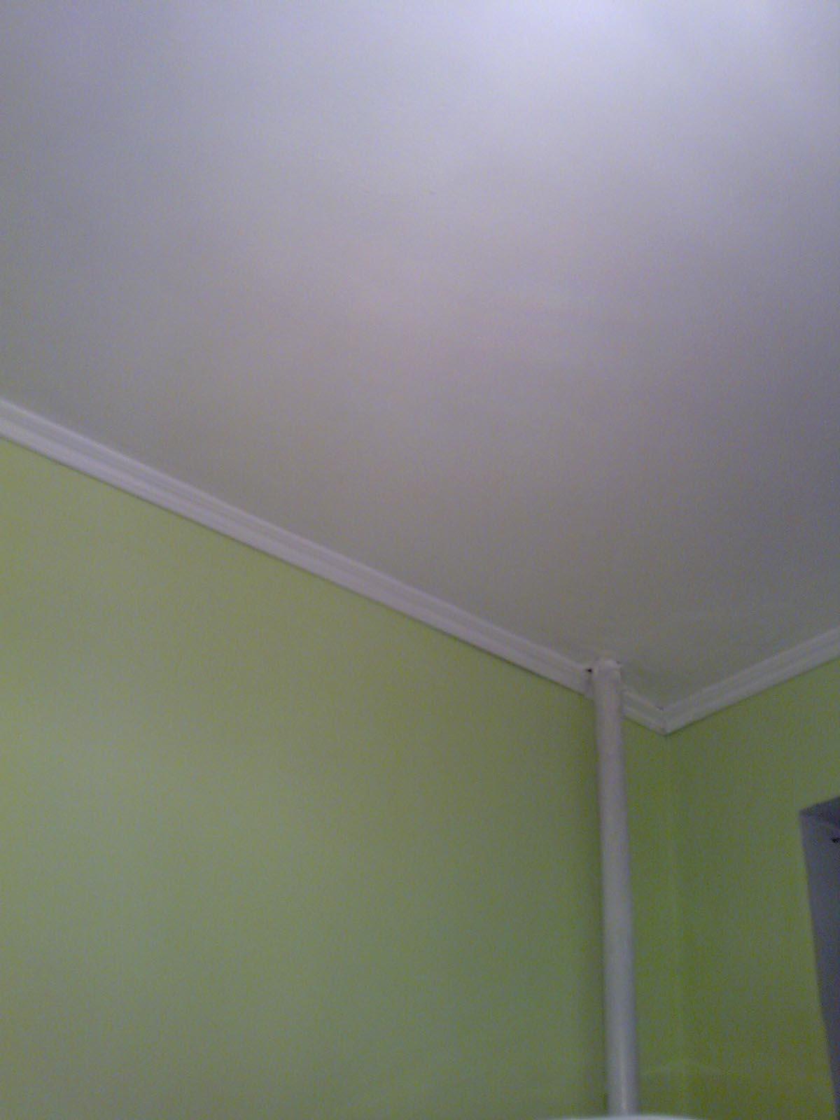 Для покраски потолка какая краска лучше акриловая или латексная цена наливной пол ветонит 6000