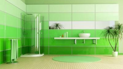 Зеленый коврик в ванной