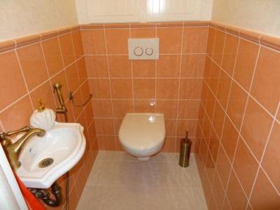 Угловая раковина для туалета с гигиеническим душем