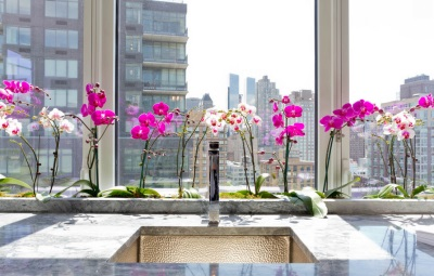 Оранжерея в ванной