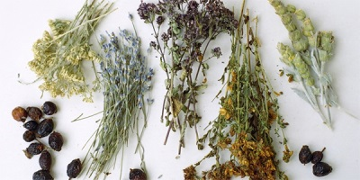 Высушенные травы для ванн