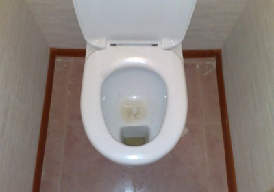 Недостатки тарельчатых унитазов