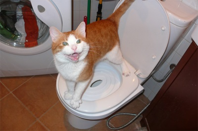 Накладка на унитаз для кошек