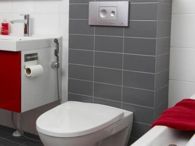 Виды смесителей с гигиеническим душем