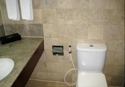 Недостатки смесителей с гигиеническим душем