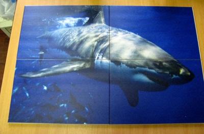 3D-фотоплитка с акулой для ванной комнаты