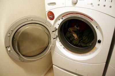Плесень в стиральной машине - причины возникновения