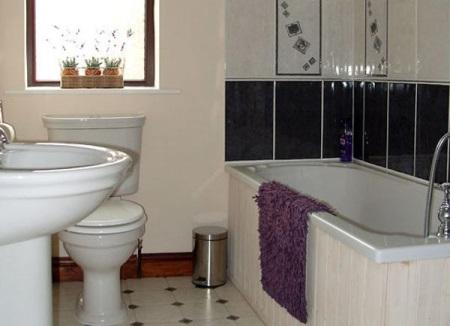 Мокрицы в ванной: как избавиться навсегда