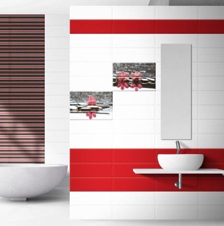 Бело-красная ванная: особенности дизайна и советы профессионалов (23 фото)